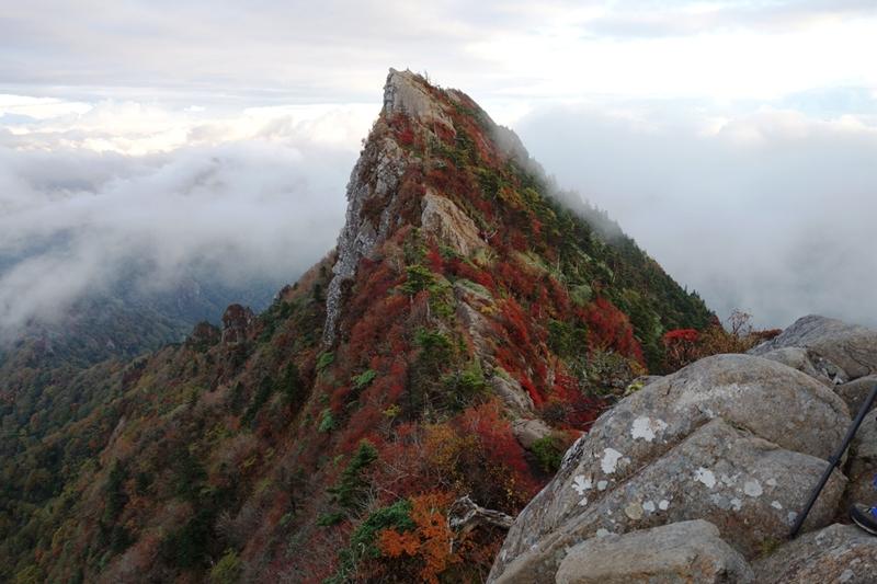 天狗岳の紅葉 取巻く雲海 10月10日 午前7時の山容