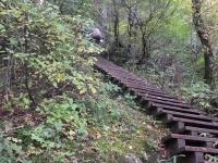 13:50 自然とマッチした木階段、何処までも続く・・・