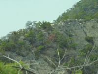 登りルートの性根岩の尾根岩コースを眺める鉄塔ルートで下山