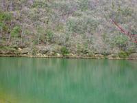 奇麗なグリーンの水 周辺は未だ枯れ色