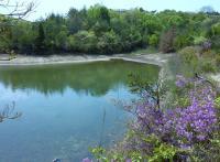 貝殻山は、どの池も深緑のきれいな水