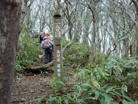 二合目 急坂登りの登山道が続く