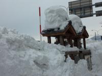 小樽駅 周辺の積雪