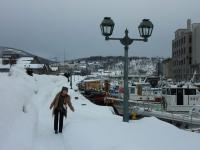 小樽運河 大雪