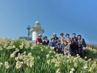 六島の水仙と灯台 3月5日 真青の空