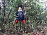 年末の冬山 笠岡の御嶽山320m 優しい陽射 暖かい