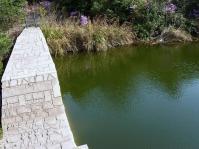 パークセンターからの下山 緑の池辿りこの堰を乗越えて…近道下山