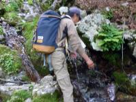 渓谷の冷水に活きをあげる。お、い、し~い、
