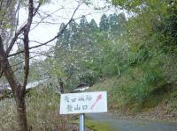 千磐(ちわ)神社 横からの登山道