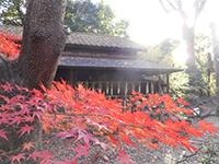 141207shirasagi02.jpg