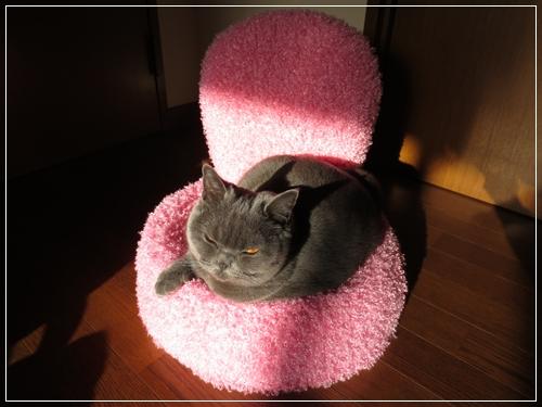 姫の椅子2