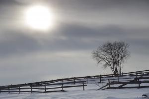 http://blog-imgs-51.fc2.com/k/o/s/kosstyle/winter2.jpg