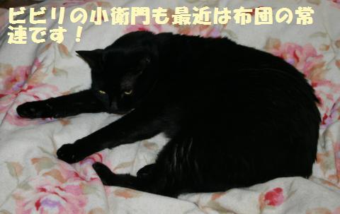 006_convert_20121231205549.jpg