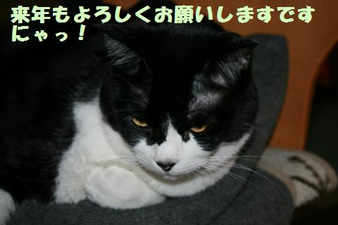 014_convert_20121231205851.jpg
