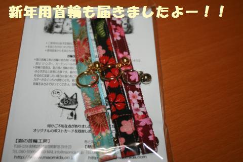 033_convert_20121231210139.jpg