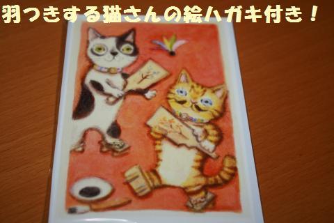040_convert_20121231210249.jpg