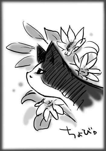 チョビと花
