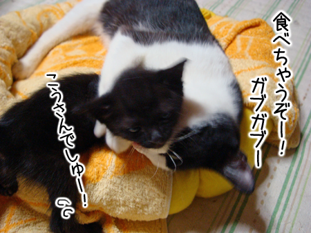 親子2012.9.10③