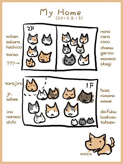 にゃんこ&わんこ2012.9.13