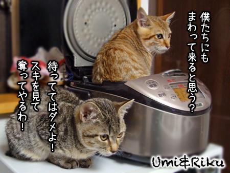海&陸2012.12.04