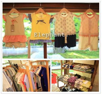 elephant-13-1.jpg