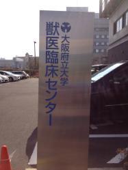 大学病院受診日 041