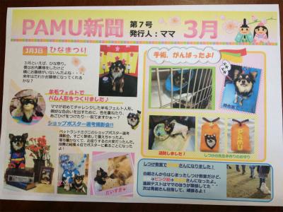 PAMU新聞3月号 018