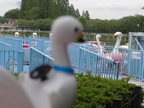東武動物公園 1