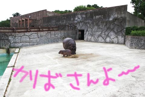 東武動物公園 2
