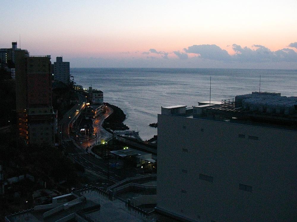 20100105_001.jpg