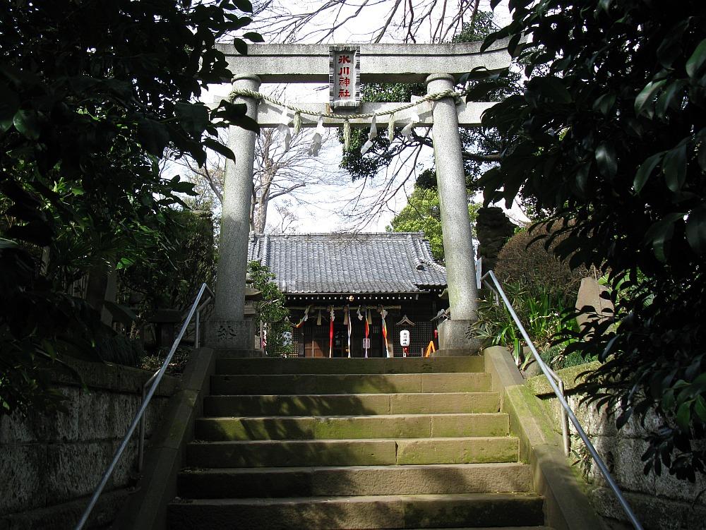 2010_04_01  (8)