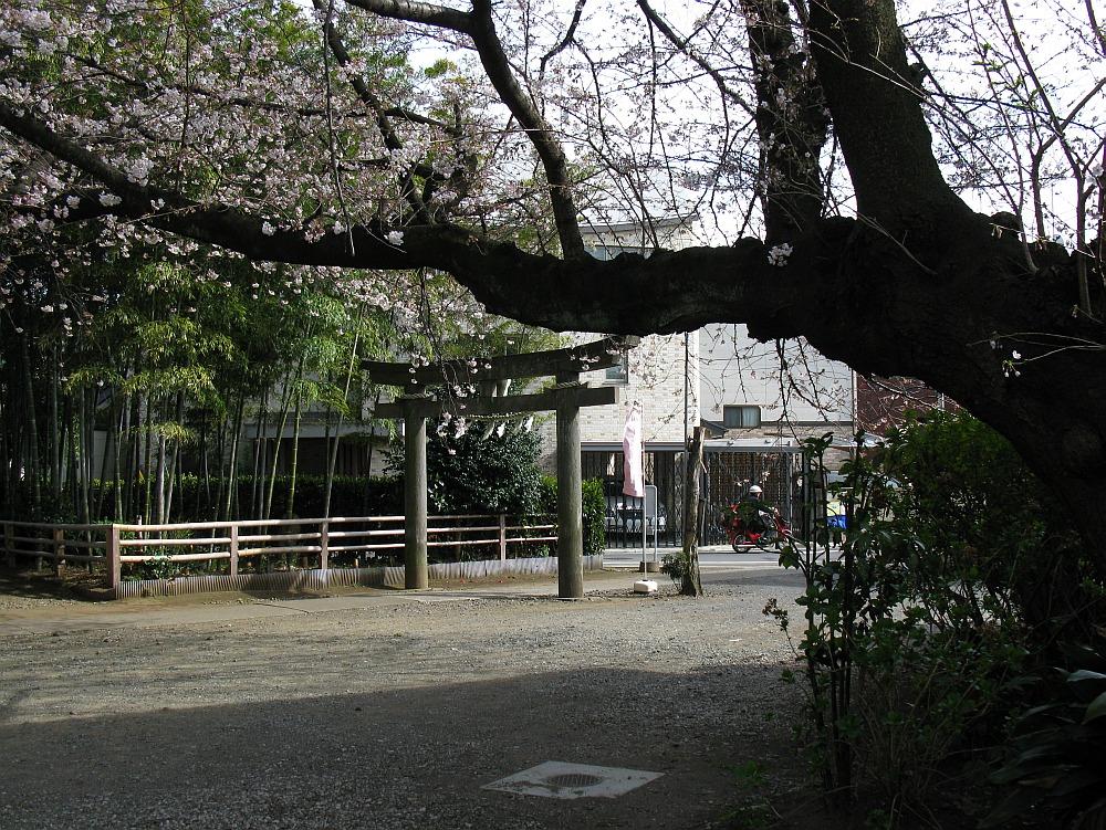 2010_04_01  (7)