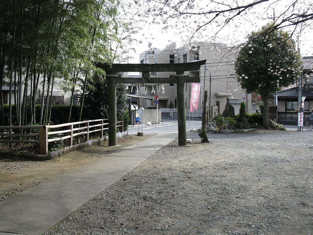 2010_04_01  (4)