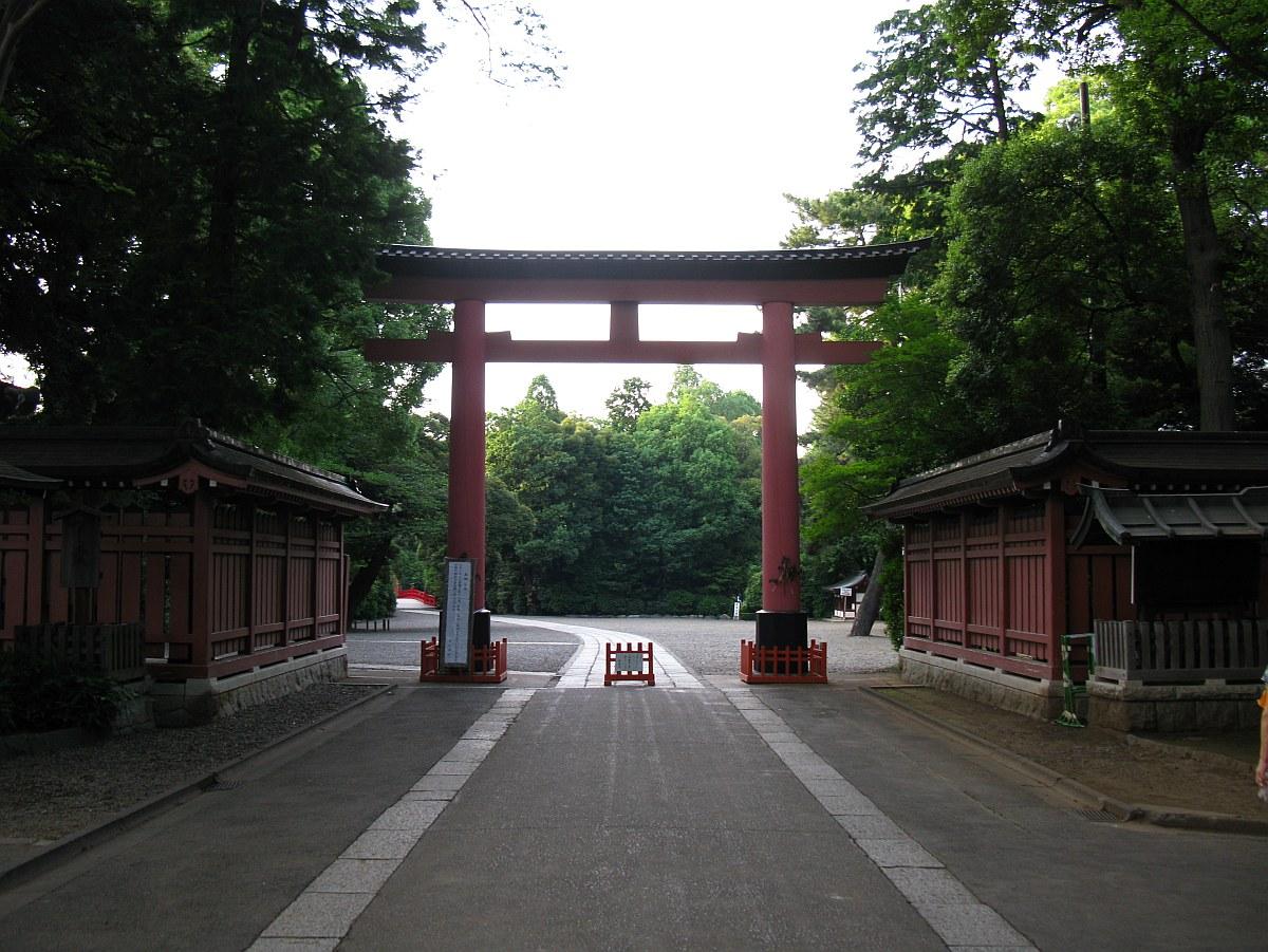 2011_06_23 023
