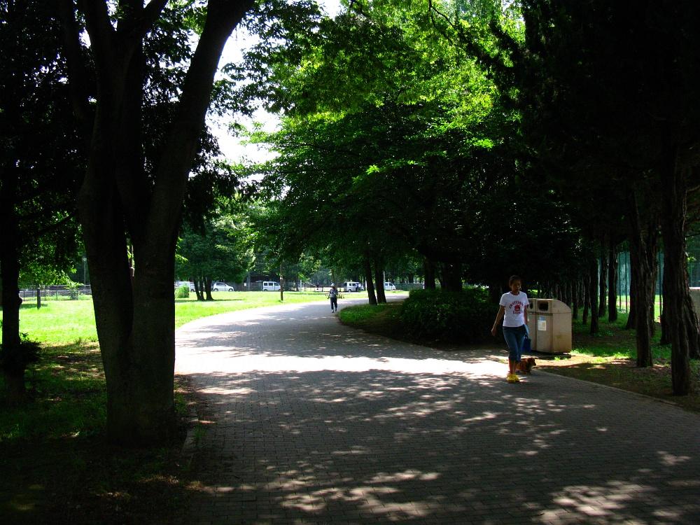 2011_07_11 005
