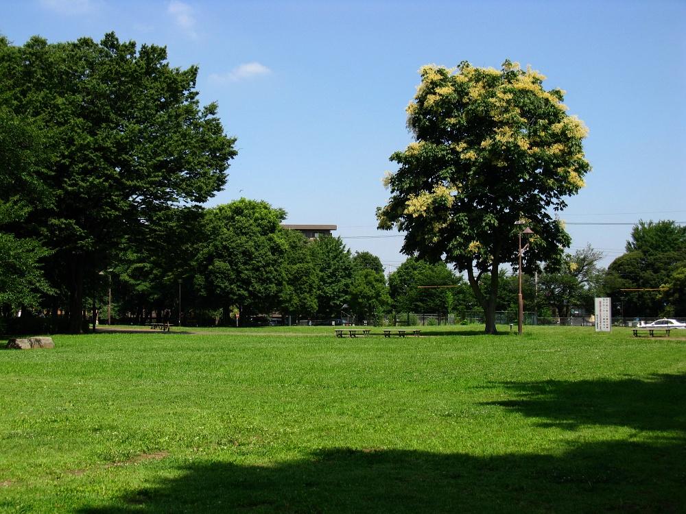 2011_07_14 004