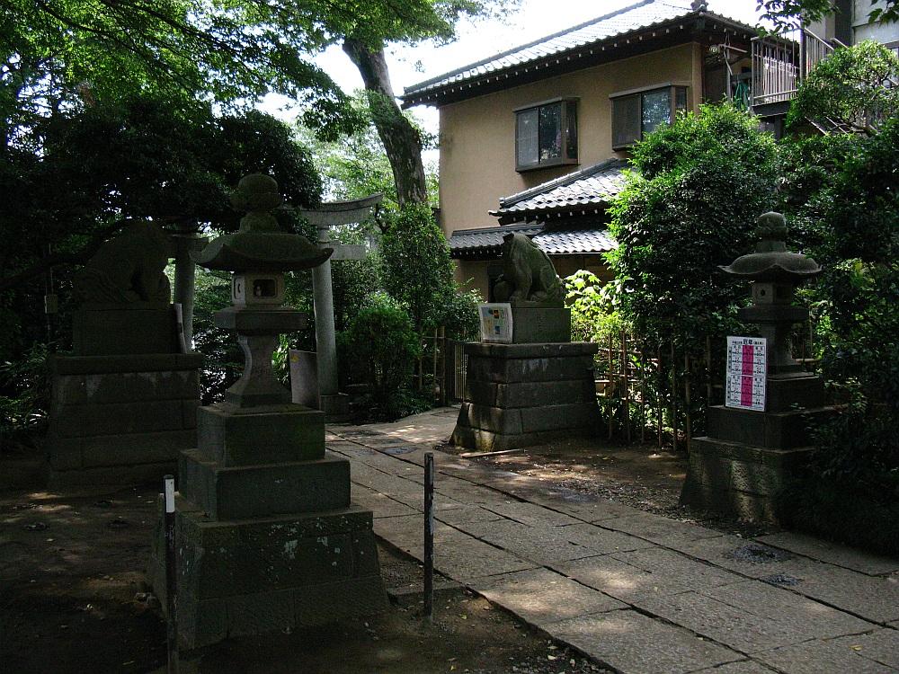 20100906 005