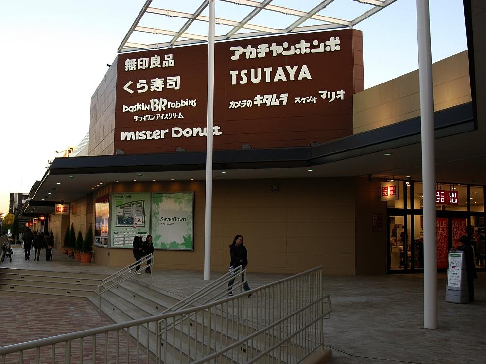 20110108 106