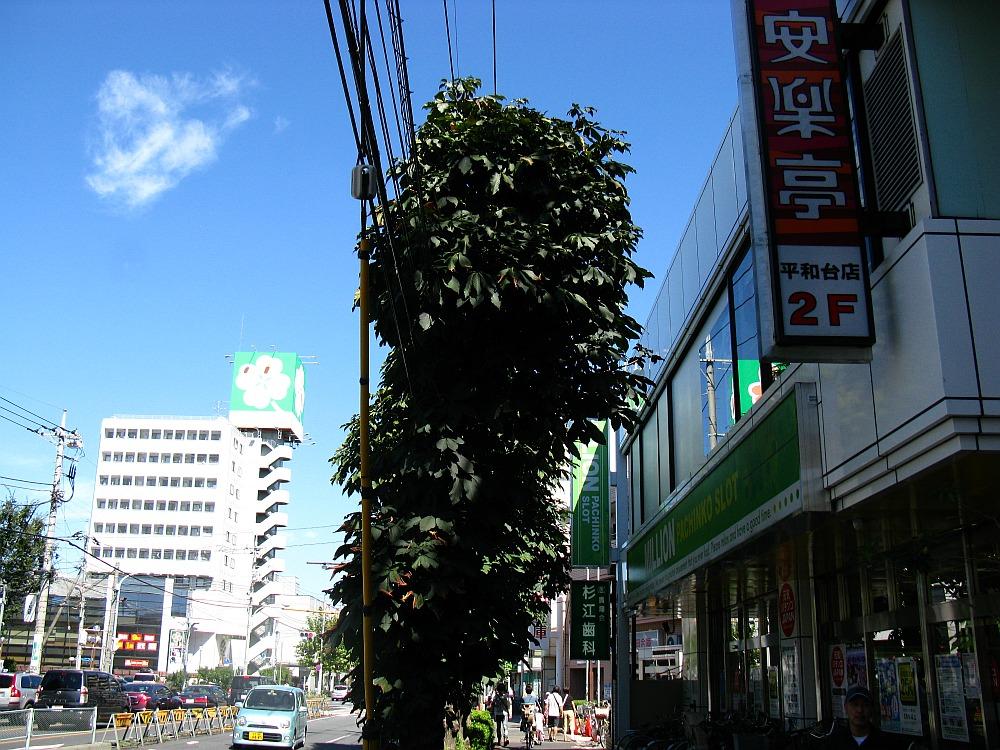 2011_09_18 035