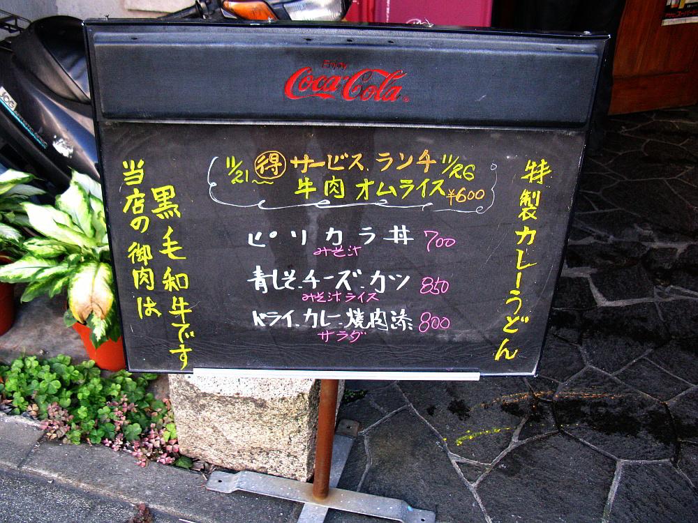 2011_11_22 002