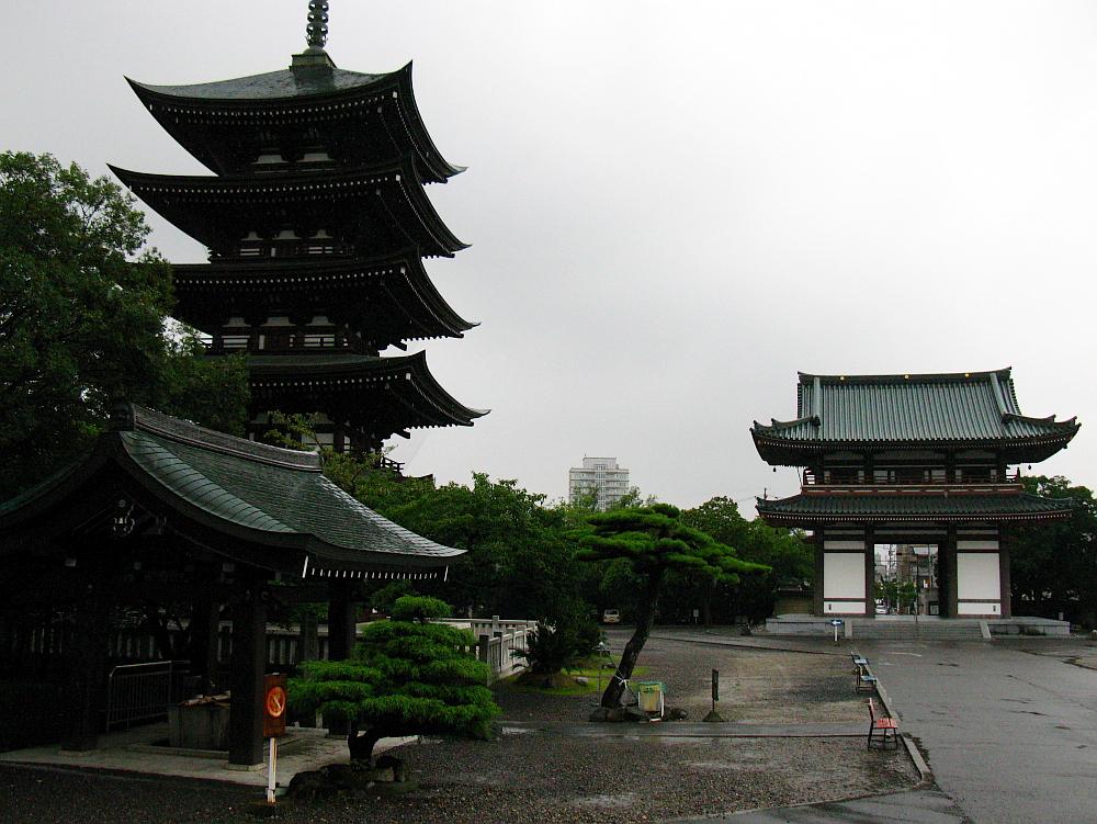 2011_08_20 034