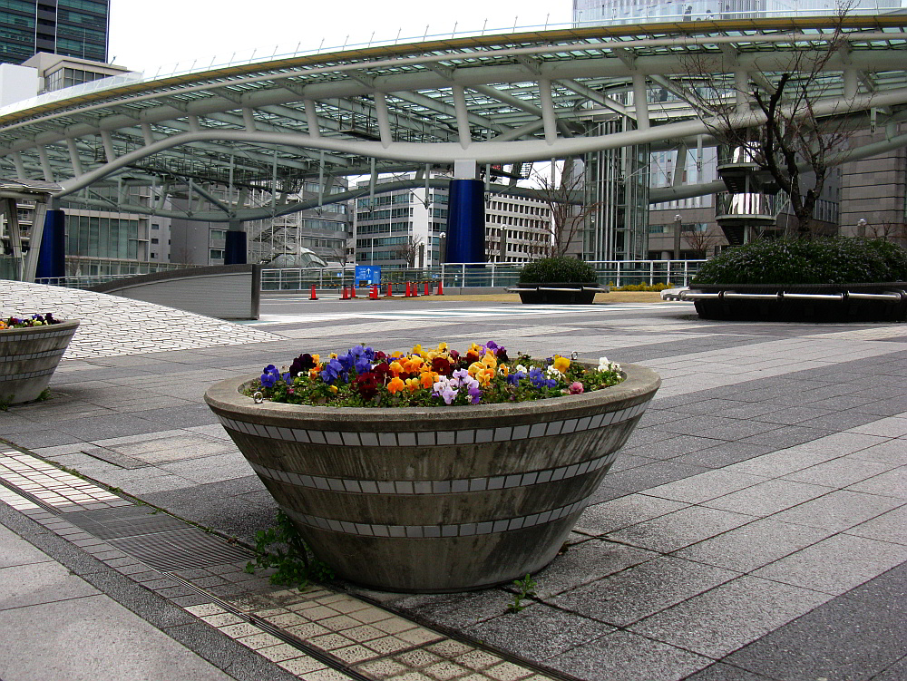 2012-03-26 006