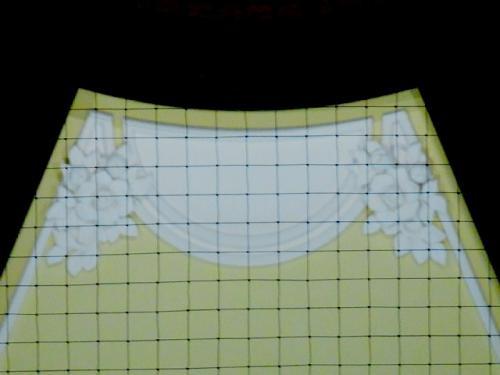 クレマチス(鐵線花)の模様