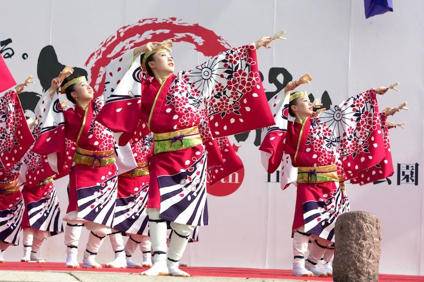maika hikari2012 015