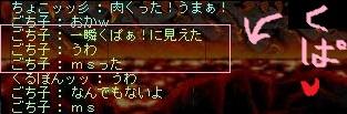 Maple120818_204932_20120826174515.jpg