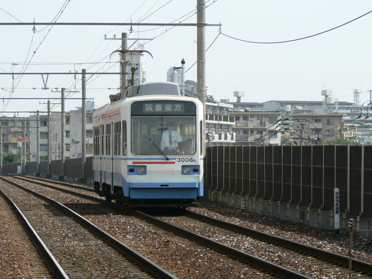 P1130055.jpg