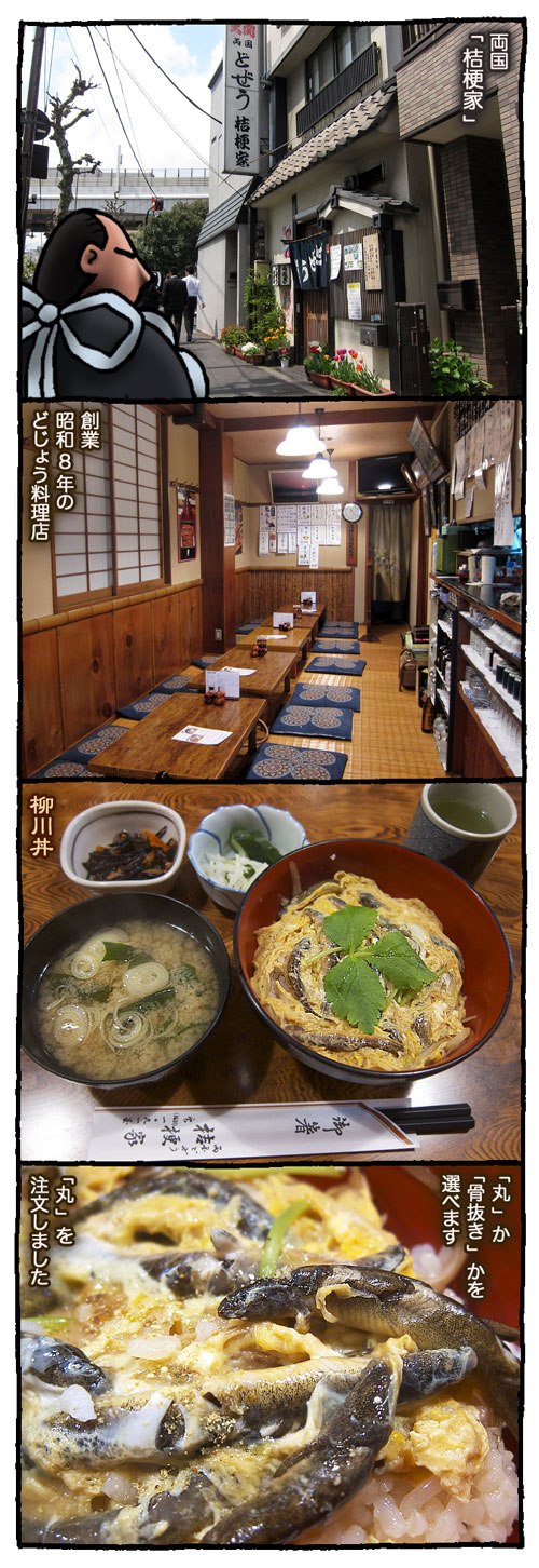 dozyoukikyoya1.jpg