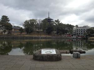 sarusawa0104_convert_20130104112559.jpg