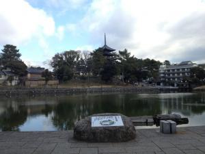 sarusawa0111_convert_20130111113046.jpg