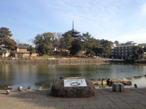 sarusawa0112_convert_20130112112556.jpg
